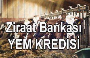 Ziraat Bankası 18 Aylık Yem Kredisi (2021 ŞARTLAR)