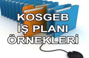 KOSGEB İş Planı Örneği (Hibe Garantili Word PDF 2021)
