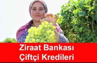 5 İle 7 Vadeli Ziraat Bankası Çiftçi Kredisi Faiz Oranlarını Yıllık %17