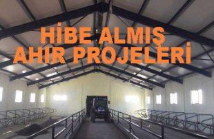 Hibe Almış Ahır Projeleri (2021 Özel Teşvik Alanlar)