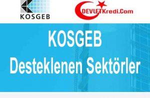 KOSGEB Desteklenen Sektörler Nelerdir? (2021 NACE Kodları)