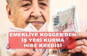 Emekliye Devlet KOSGEB Kredisi İle İş Kurma Desteği Veriyor!