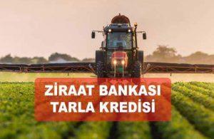 Ziraat Bankası Sübvansiyonlu Tarla Kredisi (Parsel, Hisse Birleştirme)