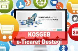 KOSGEB İnternet Sitesi e-Ticaret İle Ürün Satma Desteği