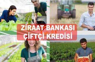 Ziraat Bankası Genç Çiftçi Kredisi (7 Yıl Vadeli Faiz Hesaplama)