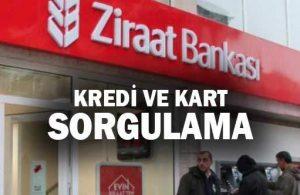 Ziraat Bankası TC İle Kredi Sorgulama (Sade 1 Dakika'da)