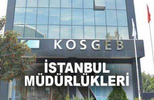 KOSGEB İstanbul Kursları Destek Başvuruları Başladı!