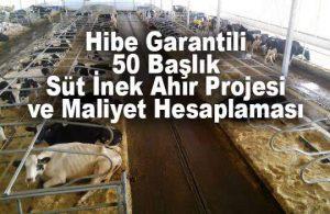 50 Baş Süt İnek Çiftliği Ahır Projesi Ölçüleri, Maliyet Hesaplaması