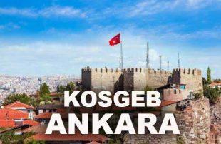 Ankara KOSGEB Girişimcilik Kurslarına Başvuru YAPMA!